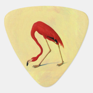 Audubon American Flamingo Painting Pick