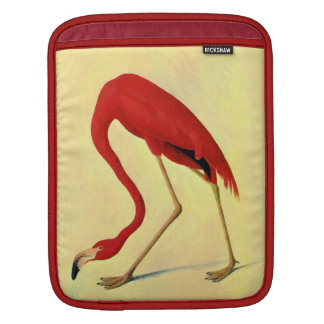 Audubon American Flamingo Painting Sleeve For iPads