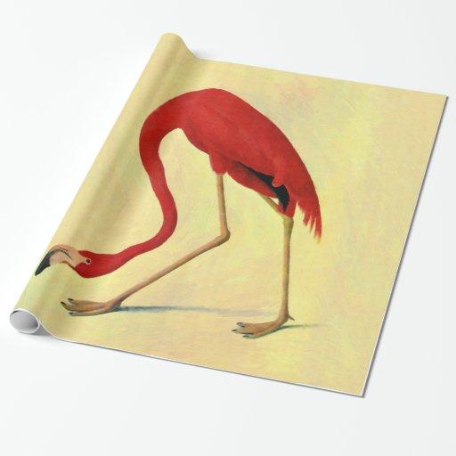 American flamingo painting - photo#15
