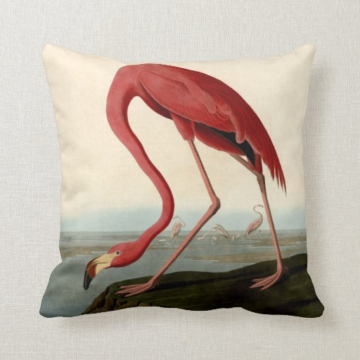 Audubon American Flamingo Pillow
