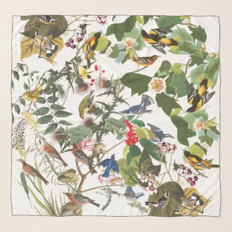 Audubon Bird Collage Wildlife Animal Chiffon Scarf