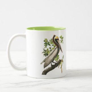 Audubon Bird Mug, Brown Pelican, 15 oz. Two-Tone Two-Tone Coffee Mug