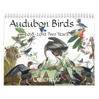Audubon Birds Wildlife Animals 2018 2019 Calendar