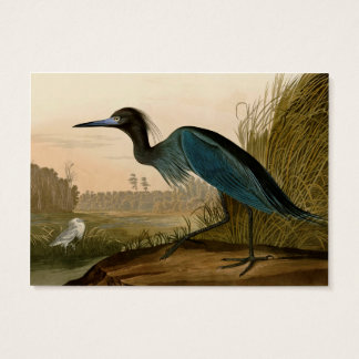 Audubon Blue Crane Heron Birds of America Business Card
