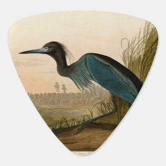 Audubon Blue Crane Heron Birds of America Pick