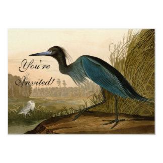 Audubon Blue Heron Card