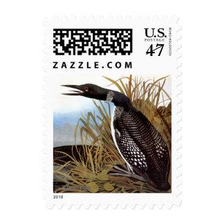 Audubon: Bribón común Sellos Postales