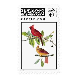 Audubon Cardinal Postage Stamp