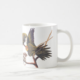 Parakeet Mugs No Minimum Quantity Zazzle