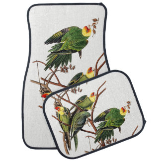 Audubon Carolina Parrot Bird Animal Car Floor Mats