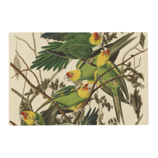 Audubon Carolina Parrot Print Birds of America Placemat