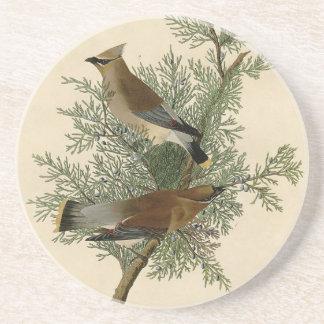 Audubon Cedar Waxwing Bird Beverage Coaster