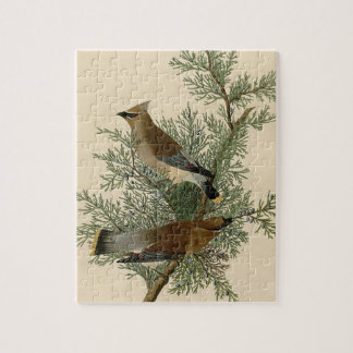 Audubon Cedar Waxwing Bird Jigsaw Puzzle