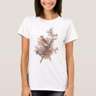 Audubon Cedar Waxwing Bird T-Shirt