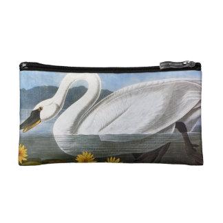 Audubon: Cisne común