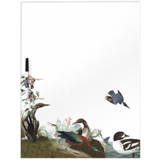 Audubon Collage of Birds Wildlife Dry Erase Board