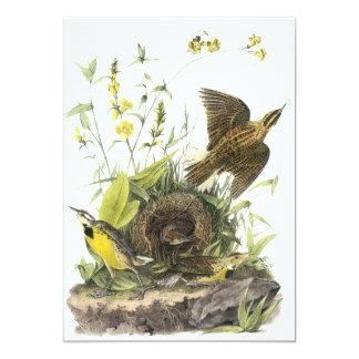 Audubon Eastern Meadowlard Custom Invitation