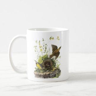 Audubon Eastern Meadowlard Mug
