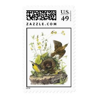 Audubon Eastern Meadowlard Stamps