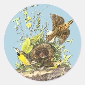 Audubon Eastern Meadowlark Bird Art Stickers