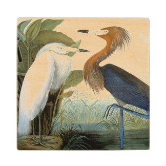 Audubon: Egret rojizo o garza púrpura Posavasos De Madera