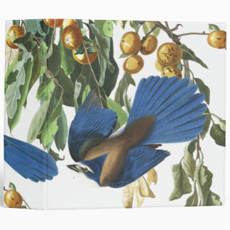 Audubon Florida Jay Birds Wildlife Fruit Binder