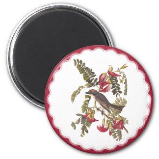Audubon Gray Tyrant Bird Vintage Bookplate Art 2 Inch Round Magnet