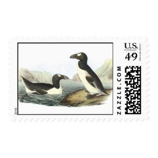 Audubon Great Auk Postage