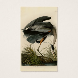 Audubon Great Blue Heron Birds Business Card