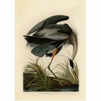 Audubon Great Blue Heron Birds Photo Cutouts