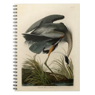 Audubon Great Blue Heron Birds Spiral Notebook