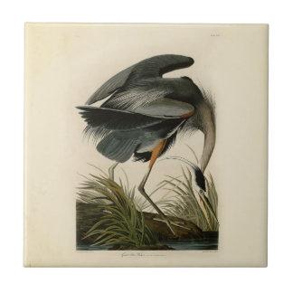 Audubon Great Blue Heron Birds Tile