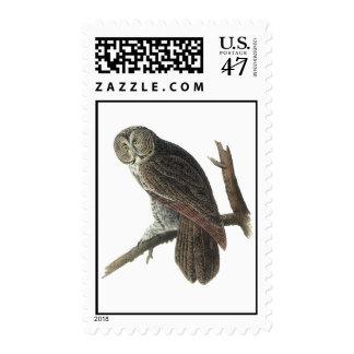 Audubon Great Gray Owl Postage