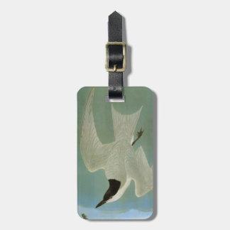 Audubon: Gull-Billed Tern Bag Tag