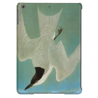 Audubon: Gull-Billed Tern Case For iPad Air