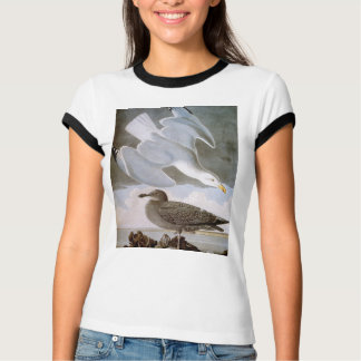 Audubon: Herring Gull T-Shirt