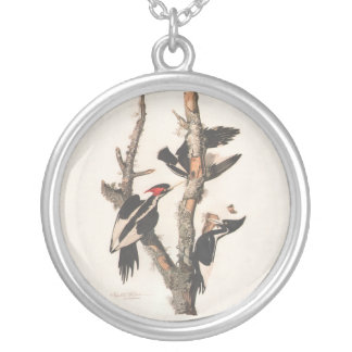 Audubon Ivory-Billed Woodpecker Silver Plated Necklace