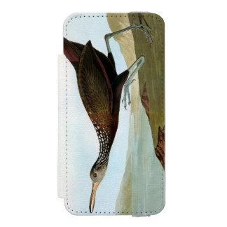 Audubon: Limpkin Wallet Case For iPhone SE/5/5s
