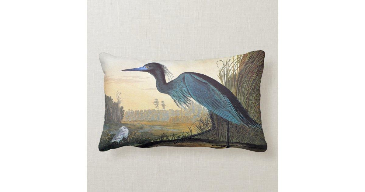 Blue Heron Throw Pillows : Audubon: Little Blue Heron Throw Pillow Zazzle