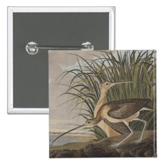 Audubon Long-Billed Curlew Sandpiper Bird Pinback Button
