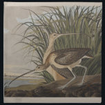 "Audubon Long-Billed Curlew Sandpiper Napkin<br><div class=""desc"">From the Audubon prints,  this is the Long-Billed Curlew.</div>"