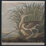 "Audubon Long-Billed Curlew Sandpiper Napkin<br><div class=""desc"">From the Audubon prints,  this is the Long-Billed Curlew.</div>"