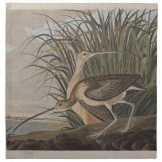 Audubon Long-Billed Curlew Sandpiper Napkin