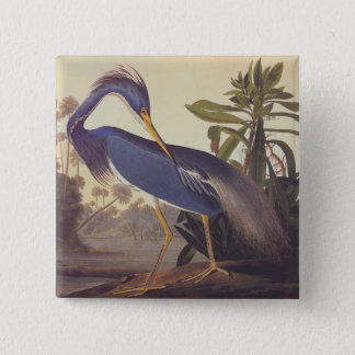 Audubon Lousiana Heron on Coastal Marsh Land Pinback Button