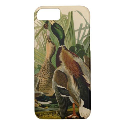 Audubon Mallard duck Bird Vintage Print Phone Case