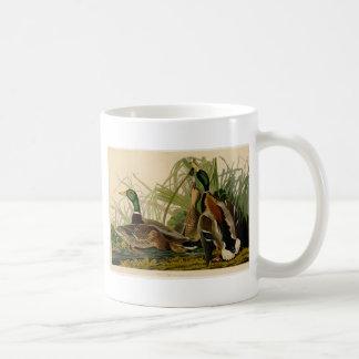 Audubon Mallard duck Bird Vintage Print Mugs