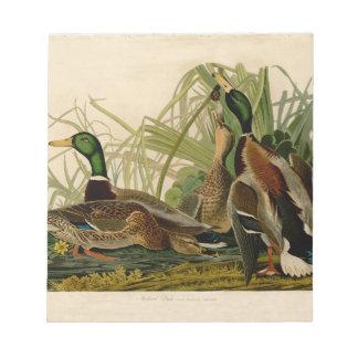 Audubon Mallard duck Bird Vintage Print Note Pad