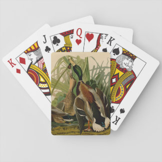 Audubon Mallard duck Bird Vintage Print Card Deck