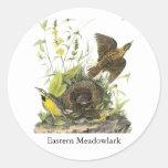 Audubon Meadowlard del este Pegatinas Redondas