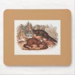 Audubon - Mink Mouse Pad